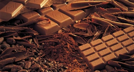 The Swiss Chocolate Industry, key figures.